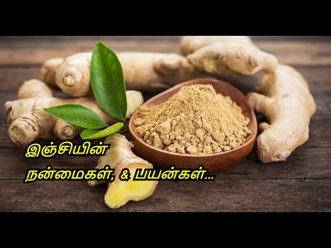 Benefits of ginger in tamil - ginger tea - weight loss - medicinal uses of ginger in tamil.