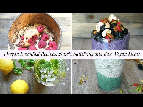 3 vegan breakfast recipes: quick, filling, easy and portable meals 😍